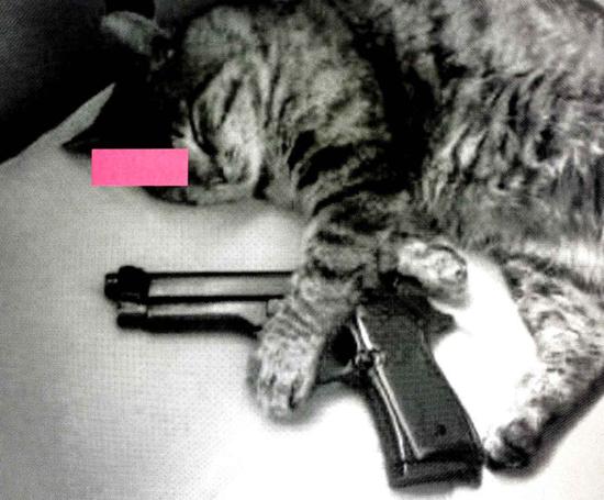 LA MUERTE – Pink Edition